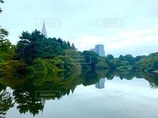 水の体の横にあるツリーの写真・画像素材[851598]