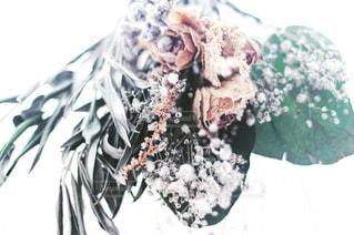結婚式ヘアードのドライフラワーの写真・画像素材[1037582]
