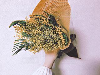 ミモザの花束の写真・画像素材[1037594]