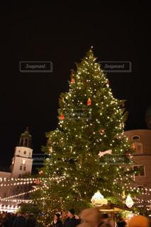 クリスマス ツリーの横に立っている人々 のグループの写真・画像素材[1618334]