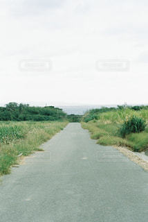 風景の写真・画像素材[324385]