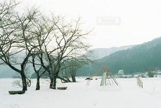 風景の写真・画像素材[324507]