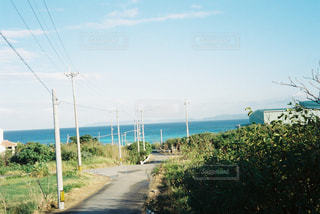 自然の写真・画像素材[328488]