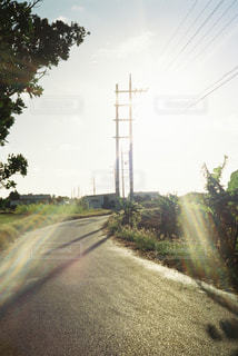 自然の写真・画像素材[328491]