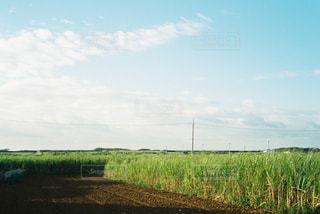 自然 - No.328493