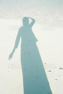 海の写真・画像素材[328504]