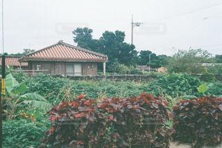 自然 - No.328559