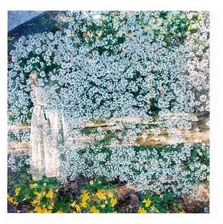 花の写真・画像素材[546959]