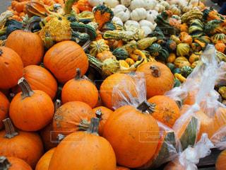 かぼちゃの山の写真・画像素材[1197891]