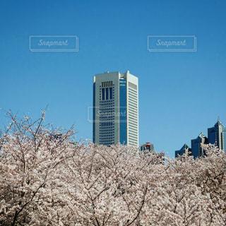高い建物の写真・画像素材[3086836]