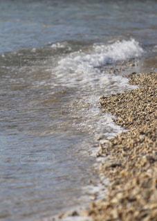 海の写真・画像素材[264413]