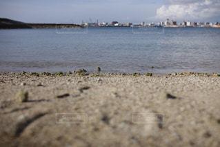 海の写真・画像素材[264420]