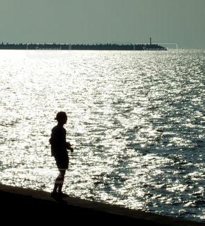 海の写真・画像素材[267327]