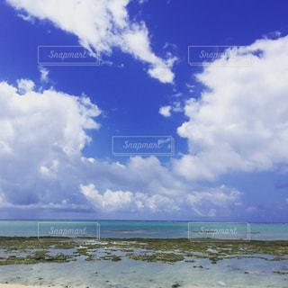 海の写真・画像素材[321478]