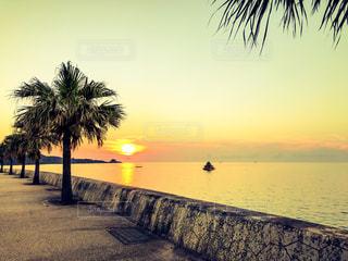 水の体の横にビーチに沈む夕日の写真・画像素材[1230106]