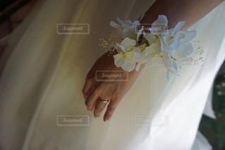 結婚式の写真・画像素材[234246]