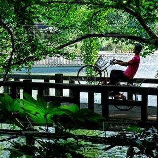 川に架かる橋 - No.396