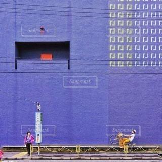 建物の側に座っている青い鳥 - No.320