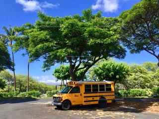 黄色のスクールバスの写真・画像素材[1609345]