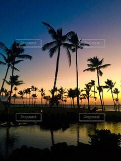 ハワイのサンセットの写真・画像素材[1609347]