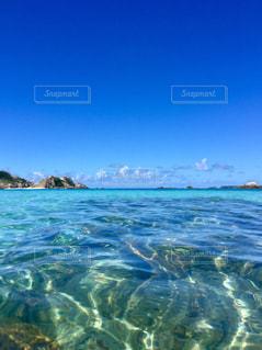 渡嘉敷島の海の写真・画像素材[1615429]