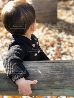 公園の落ち葉の写真・画像素材[997731]