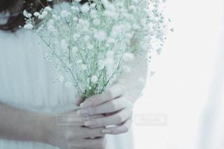 女性の写真・画像素材[235070]