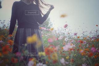 女性の写真・画像素材[250652]