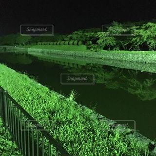 自然の写真・画像素材[234856]