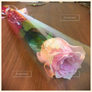 花の写真・画像素材[235791]