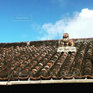 沖縄の写真・画像素材[235577]