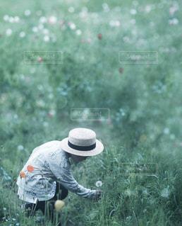 自然の写真・画像素材[497320]