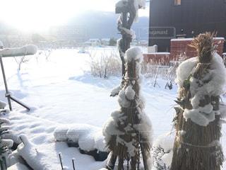 雪景色の写真・画像素材[1045993]