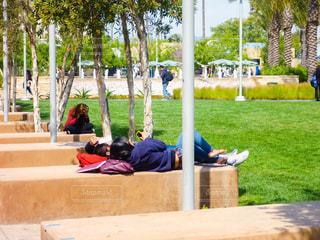 公園 - No.243192