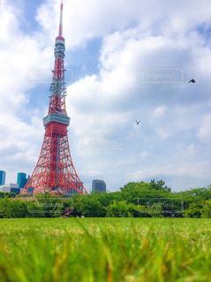東京タワーの写真・画像素材[236861]