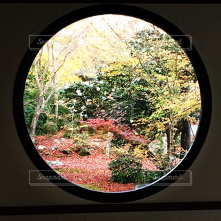 No.278984 風景