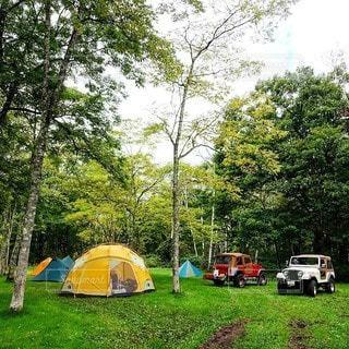 キャンプの写真・画像素材[6789]