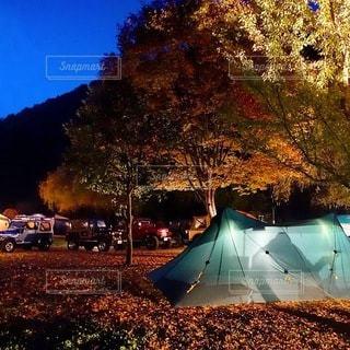キャンプの写真・画像素材[7033]