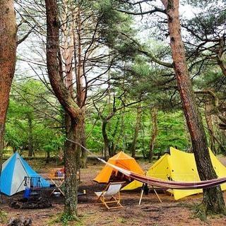 キャンプの写真・画像素材[7279]