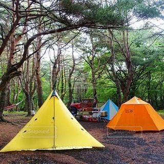 キャンプの写真・画像素材[7299]