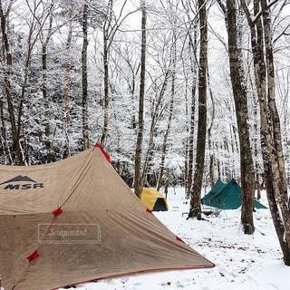 キャンプの写真・画像素材[7479]