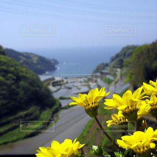 風景の写真・画像素材[459506]