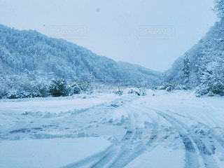 雪景色の写真・画像素材[980606]