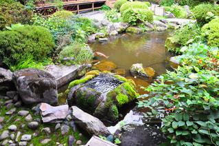 No.303060 神社