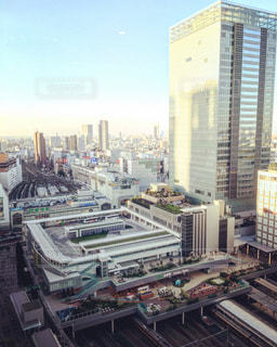 新宿の写真・画像素材[239044]