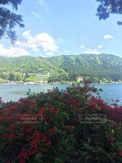 背景の山と水の大きな体のビューの写真・画像素材[726407]