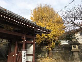 龍口寺 - No.729219