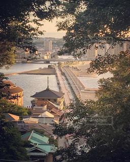 湘南の景色の写真・画像素材[1359192]