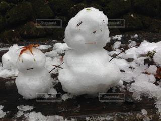 冬の写真・画像素材[238142]