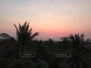 夕日の写真・画像素材[429195]